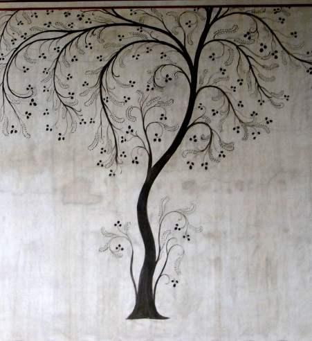 albero kerylos