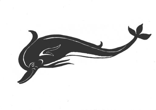 acciottolato delfini disegno